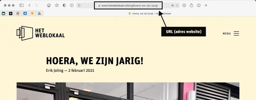 URL websitepagina WordPress SEO